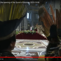 Ekskomunika za modlitwę z poganami i heretykami. Konstytucje Apostolskie o Synodzie Amazońskim.